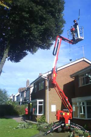 Tree Surgeon Dudley
